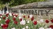The Collegetown entrance to Cornell University in springtime.
